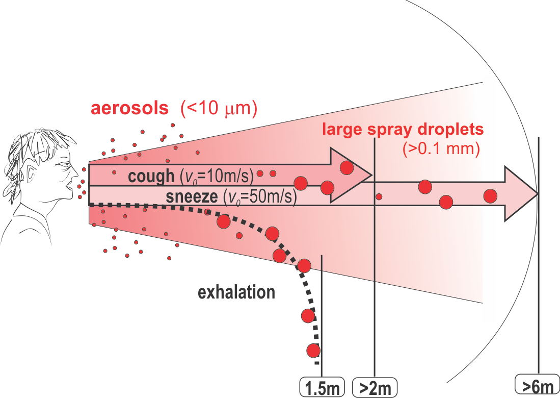 aerosol and droplet projection.png